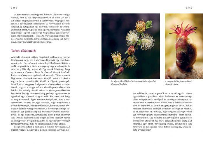 a-novenyek-szerelmi-elete (1)